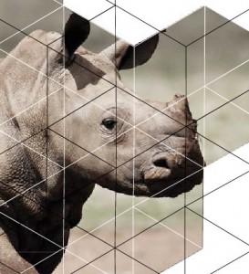 ARM Cement Rhino